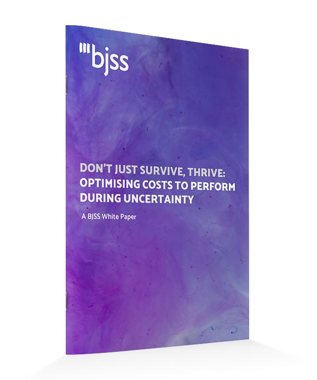 BJSS Cost Optimisation White Paper